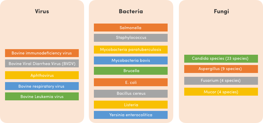 biomagnetism-and-dairy-products